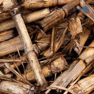 Cedaceria Industrial en el sector biomasa